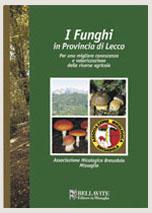 I funghi in provincia di Lecco