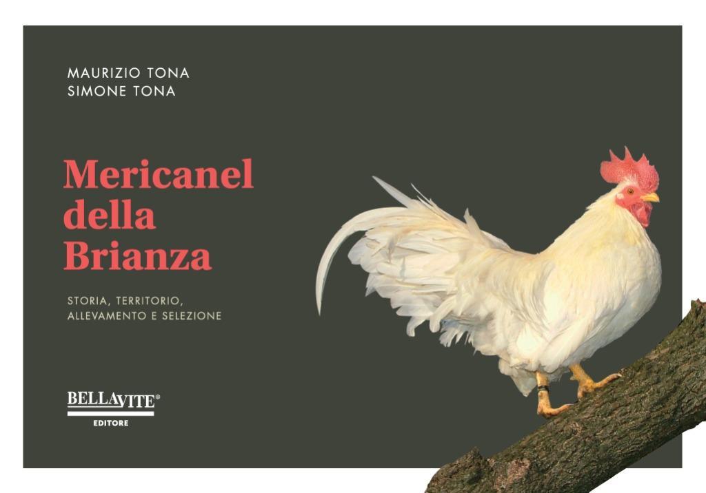 Mericanel della Brianza_COVEr per sito